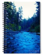 South Fork Of The Tieton  Spiral Notebook