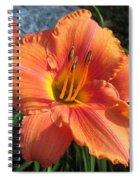 South Seas Daylily Spiral Notebook