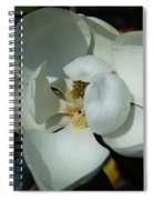 Southern Bell I Spiral Notebook