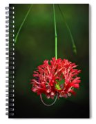 Southern Belle Spiral Notebook