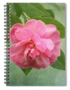 Southern Camellia Flower Spiral Notebook