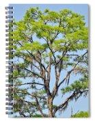 Southern Cypress Spiral Notebook