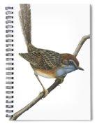 Southern Emu Wren Spiral Notebook