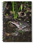 Southern Leopard Frog Spiral Notebook