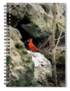 Southern Red Bird By The Flint River Spiral Notebook