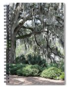 Southern Trees Spiral Notebook