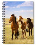 Southwest Wild Horses On Navajo Indian Reservation Spiral Notebook