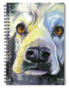 Spaniel In Thought Spiral Notebook