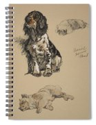 Spaniel, Pekinese And Chow, 1930 Spiral Notebook