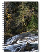 Spanish Moss And Falls Spiral Notebook