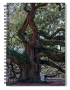 Spanish Moss Draped Limbs Spiral Notebook