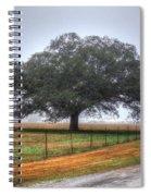 Spanish Oak IIi Spiral Notebook