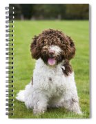 Spanish Water Dog Spiral Notebook