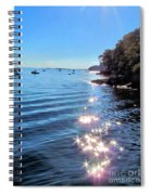 Sparkles And Twinkles Spiral Notebook