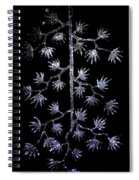 Sparkling Diamond Snowflakes Spiral Notebook