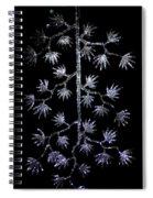 Sparkling Diamond Snowflakes Spiral Notebook