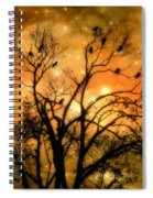 Sparkling Stars Light The Sky Spiral Notebook