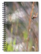 Sparkling Morning Sunshine With Dragonfly Spiral Notebook