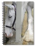 Sparky And Sterling Silvia Spiral Notebook