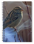 Sparrow In A Weave Spiral Notebook