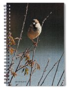 Sparrow On A Twig Spiral Notebook