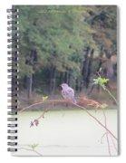 Sparrow On Arc Spiral Notebook