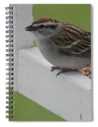Sparrow On Feeder Spiral Notebook