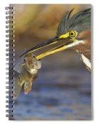 Speared Spiral Notebook