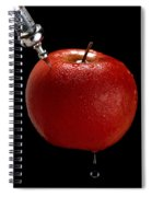 Special Treatment. Serbia Spiral Notebook