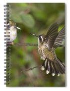 Speckled Hummingbirds Spiral Notebook