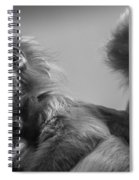 Spectacled Langur Family Spiral Notebook