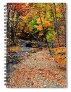 Spectrum Of Color Spiral Notebook