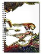 Specularity Spiral Notebook