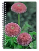 Sphere Of Pink Spiral Notebook