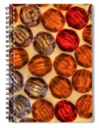 Spheres Of Beads Spiral Notebook