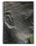 Sphinx Statue Head Grey Usa Spiral Notebook