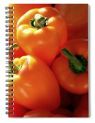 Spice It Up Spiral Notebook