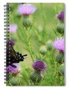 Spicebush Swallowtail Heaven Spiral Notebook