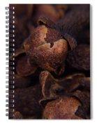 Spicy Close-ups Cloves Spiral Notebook