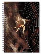 Spider - Building A Ferris Wheel Spiral Notebook