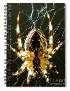 Got Flies? Spiral Notebook