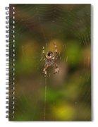 Spider Web Spiral Notebook