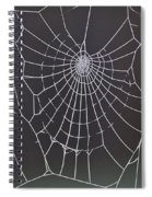 Spider Web With Frost Spiral Notebook