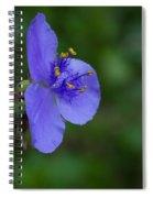 Spiderwort #1 Spiral Notebook