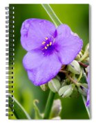 Spiderworts Spiral Notebook