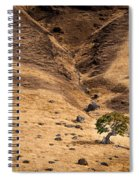 Spieden Island 2 Spiral Notebook