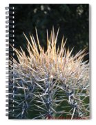 Spike Head In Silver Spiral Notebook