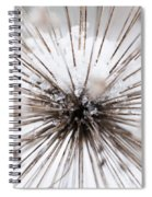Spikes And Ice Spiral Notebook