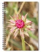 Spikes Spiral Notebook