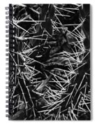 Spikes Of Nature Spiral Notebook